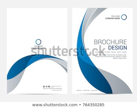 mavi · iş · broşür · dizayn · dünya · haritası · yarım · ton - stok fotoğraf © vipervxw