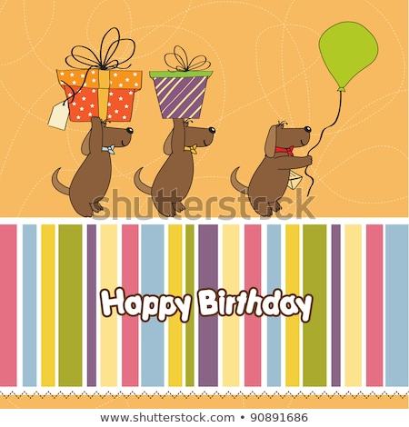 Három kutyák ajánlat nagy ajándék születésnap Stock fotó © balasoiu