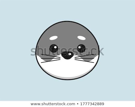 cute seal Stock photo © vwalakte