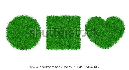 Heart in grass Stock photo © hraska
