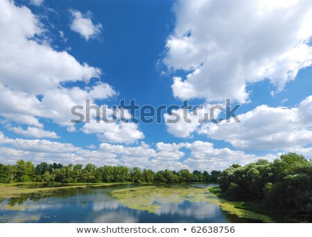 green grass with river under cloudy sky Stock photo © mycola