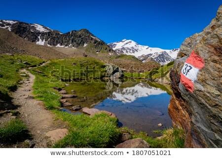 Park alpine landschap klein stream waterval Stockfoto © Antonio-S