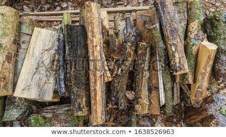 büyük · yakacak · odun · açık · atış · yumuşak - stok fotoğraf © alphababy