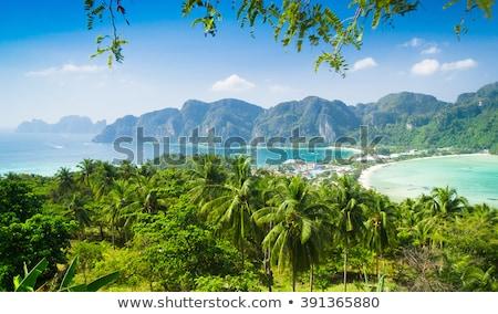 熱帯 ジャングル 海岸線 石灰岩 丘 ストックフォト © smithore