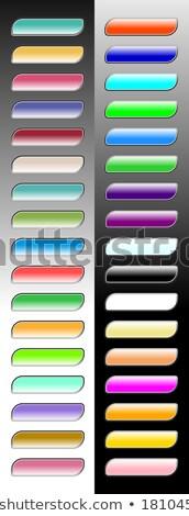 Multimedia Web Internet rosa Vektor Taste Stock foto © rizwanali3d