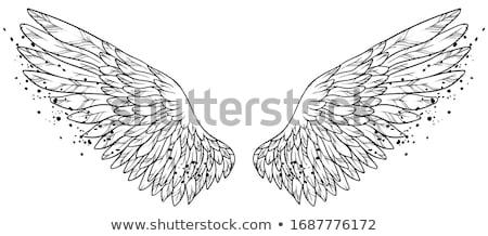 Decoratief gratis vleugel half vogel geïllustreerd Stockfoto © Soleil