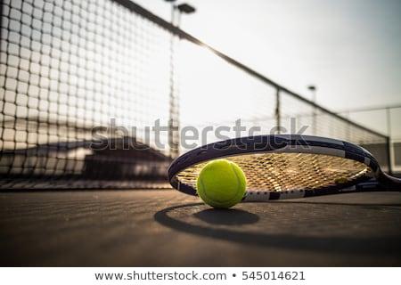 Teniszlabda labda gyep tenisz izolált fehér Stock fotó © orensila