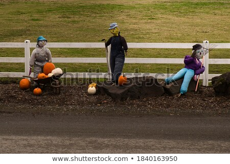 Pumpkin Character In Action Stock photo © Lightsource