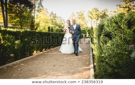 bride leads groom on the road Stock photo © tekso
