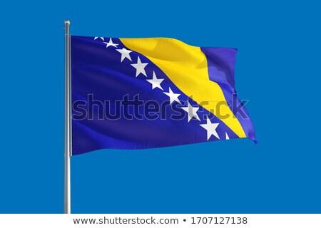 ボスニアヘルツェゴビナ フラグ ベクトル 画像 背景 ストックフォト © Amplion