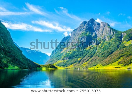 viewpoint aurland valley Stock photo © compuinfoto