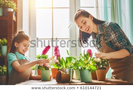 женщину цветок теплица садоводства день Сток-фото © IS2