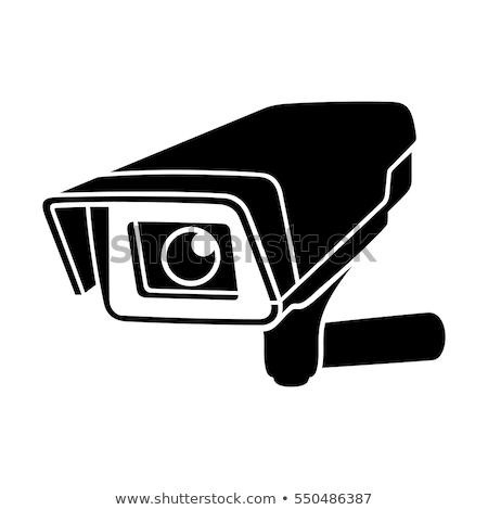 サーベイランス カメラ 防犯カメラ レンガ 建物 眼 ストックフォト © Gertje