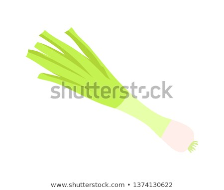 Young Onion Vegetable, Green Shoots, Color Icon Stock photo © robuart