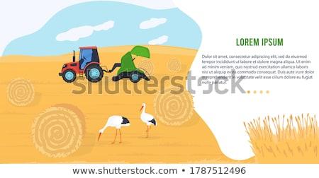 Agrícola maquinaria ícone desenho animado vetor bandeira Foto stock © robuart