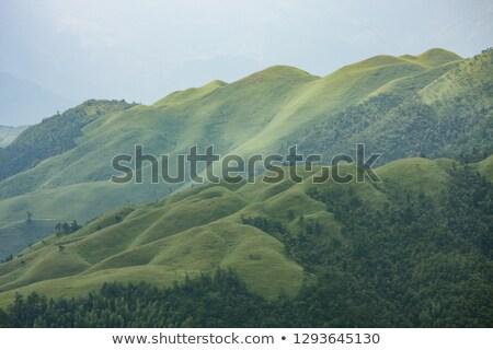 Herboso montana China paisaje hierba naturaleza Foto stock © Juhku