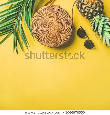 Kleurrijk zomer vrouwelijke mode strand vakantie Stockfoto © Illia