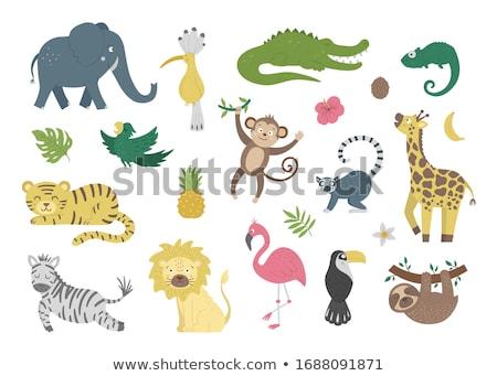 Vektor rajzolt állat clip art aranyos boldog háttér Stock fotó © VetraKori
