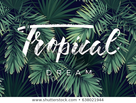 Summer Party Flyer Design with flower, tropical palm leaves and toucan bird on green background. Vec Stock photo © articular