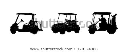 Man in the golf cart illustration Stock photo © tiKkraf69