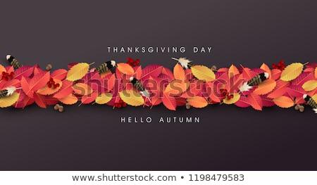 boldog · hálaadás · kalligráfia · szöveg · ősz · juharlevél - stock fotó © ikopylov