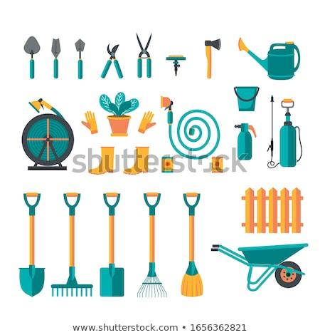 Zestaw pojedyncze obiekty ogrodnictwo ilustracja kwiat drzewo Zdjęcia stock © bluering