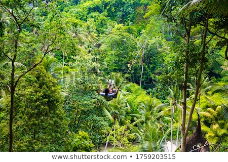 Young  male tourist swinging on the cliff in the jungle Stock photo © boggy
