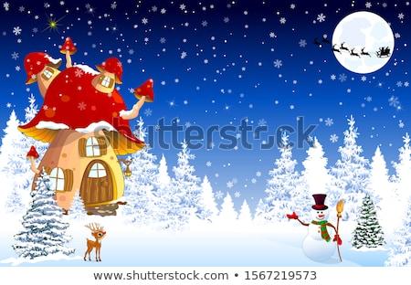 Champignon huis sneeuw bomen nacht christmas Stockfoto © liolle