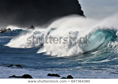 Breaking waves on the coast of Tenerife island, Canary islands, Atlantic ocean, Spain Stock photo © ruslanshramko