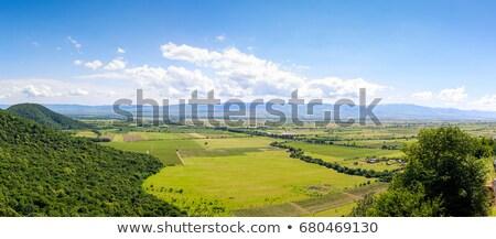 Vista valle Georgia cáucaso montanas colina Foto stock © borisb17