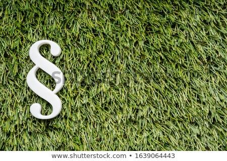 Paragraaf teken groen gras gazon foto groene Stockfoto © AndreyPopov