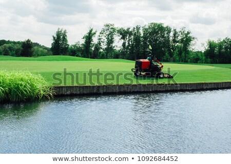 Man golfbaan golf winkelwagen vrouwelijke glimlachend Stockfoto © ElenaBatkova
