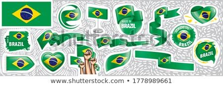 Vektor Set Flagge Brasilien unterschiedlich kreative Stock foto © butenkow
