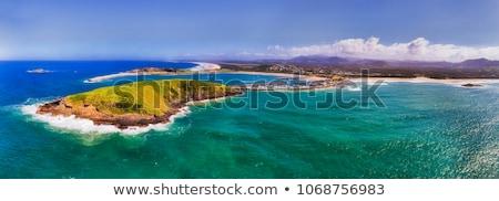 Porto Australia marina montone uccello isola Foto d'archivio © jeayesy