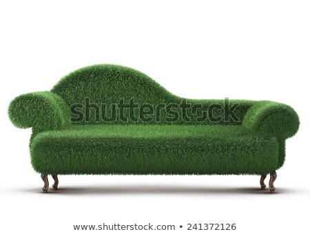 yeşil · doğa - stok fotoğraf © gaudiums