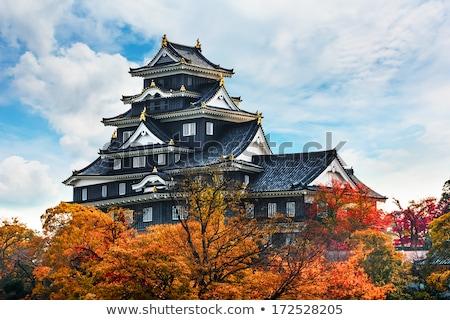 castelo · espaço · viajar · Ásia · história · ao · ar · livre - foto stock © pavel_bayshev