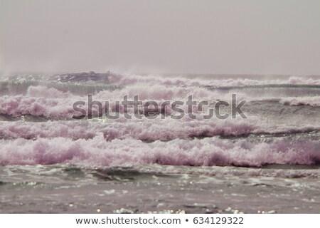 vida · praia · blue · sky · água · nuvens · mar - foto stock © saje