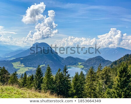 Lake 'Hintersteiner See' in Austria Stock photo © haraldmuc
