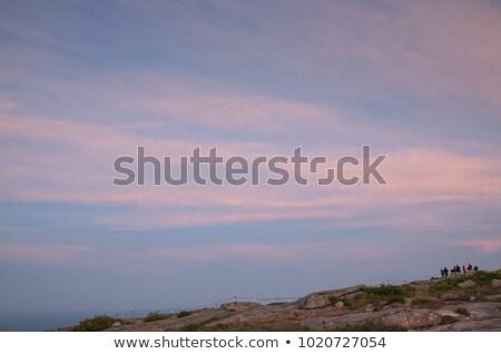 Tourists watch sunset from National Harbor Stock photo © backyardproductions