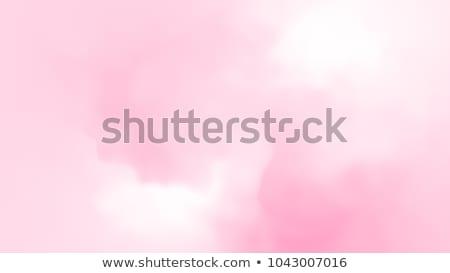 Pink and white swirl flower Stock photo © emattil