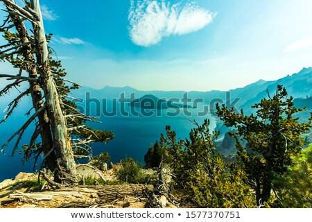 ilha · cratera · lago · parque · azul · Oregon - foto stock © pancaketom