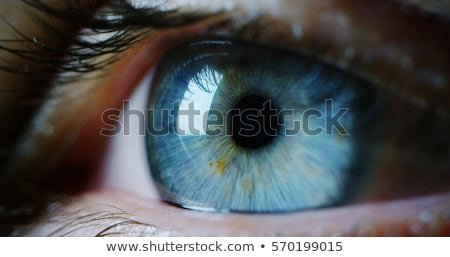 close up portrait of woman with beautiful blue eyes beauty stock photo © victoria_andreas