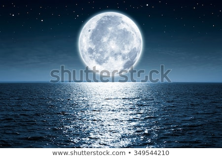 Dolunay su ay siyah siluet park Stok fotoğraf © hlehnerer
