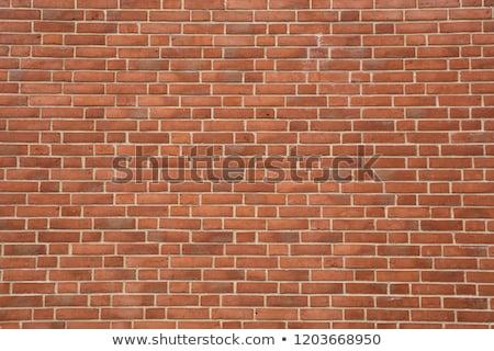 muur · grijs · oude · stenen · muur · textuur · achtergrond - stockfoto © iTobi