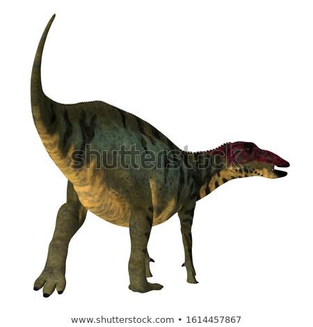 Dinozor Çin 3d render Stok fotoğraf © AlienCat