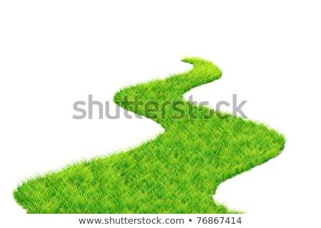 Grass Road Lane Meadow Spring Garden Stockfoto © Vectomart