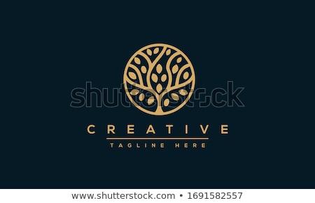 Stockfoto: Boom · logo · illustratie · gestileerde · vier · kleur
