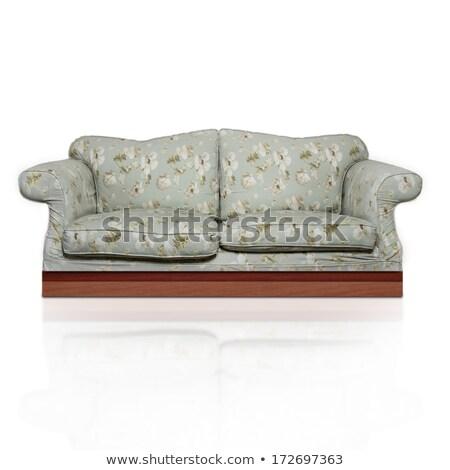 Starych kwiatowy sofa front vintage zielone Zdjęcia stock © albund