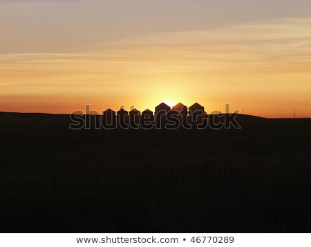 Row of Houses Silhouetted at Sunset Stock photo © iofoto