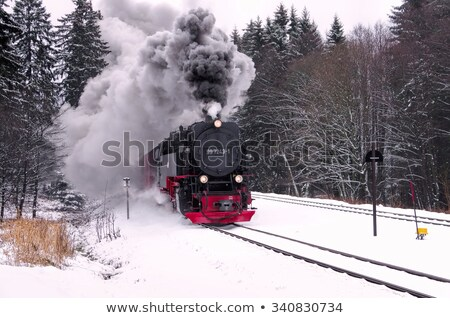 Locomotief winter trein station business Stockfoto © vichie81
